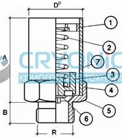 Предохранительный клапан CAEN VSR-R