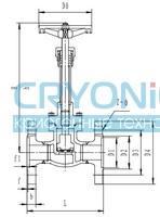 Криогенный запорный клапан CCK T357DA10-65 PN64