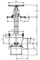 Криогенный запорный клапан угловой CCK T251DL200-350 PN25