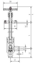 Криогенный запорный клапан угловой CCK T311DL10-15 PN40