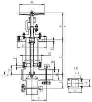 Криогенный запорный клапан угловой CCK T121DL25-50 PN6
