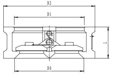Криогенный обратный клапан T212DH80-500 PN20