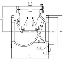Обратный клапан T251H250 PN25