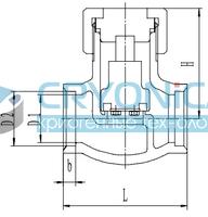 Криогенный обратный клапан T338DH10-40 PN40