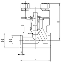 Криогенный обратный клапан T551DH10-40 PN250