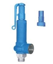 Предохранительный клапан тип 06318