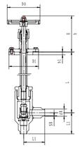 Криогенный запорный клапан угловой CCK T251DL10-15 PN25
