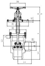 Криогенный запорный клапан угловой CCK T361DL125-300 PN64