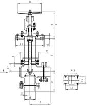 Криогенный запорный клапан угловой CCK T321DL65-80 PN40